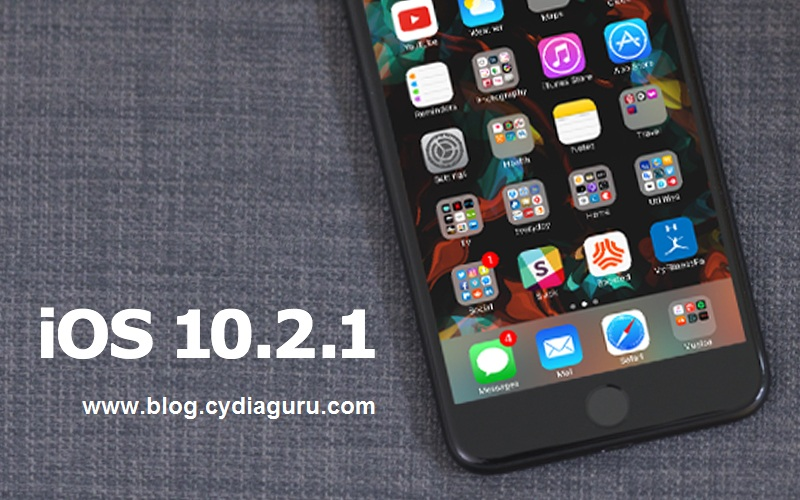 iOS 10.2.1 Cydia Download